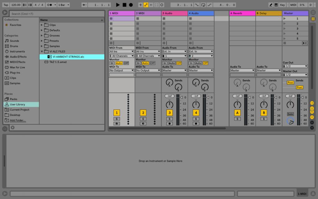 Ableton Live Clip (ALC) Files4